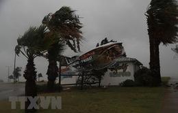 Mỹ chuẩn bị ứng phó với siêu bão Florence
