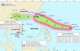 Trong 48 đến 60 giờ tới, bão số 5 suy yếu thành áp thấp nhiệt đới