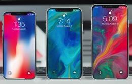 Những đồn đoán về iPhone mới