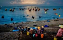 Đi chợ cá buổi sớm mai
