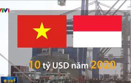 Hợp tác kinh tế Việt Nam – Indonesia