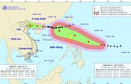 Tin bão khẩn cấp: Bão số 5 cách Móng Cái (Quảng Ninh) khoảng 400km