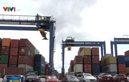Hải Phòng khởi tố 2 công ty nhập khẩu phế liệu trái phép