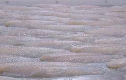 Mỹ giảm mạnh thuế với cá tra, basa Việt Nam