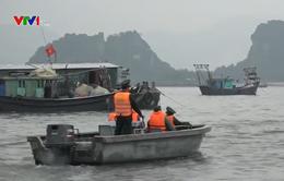 Quảng Ninh lập đoàn công tác chỉ đạo công tác phòng chống bão