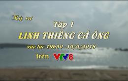 """Ký sự """"Linh thiêng cá ông"""" (Tập 01, 19h30 thứ Tư, 19/9) trên VTV8"""