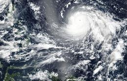 Philippines nâng mức độ cảnh báo đối với siêu bão Mangkhut
