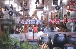Các cửa hàng thịt chó dần biến mất ở Hàn Quốc