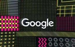 Google trình làng công cụ tìm kiếm tập dữ liệu