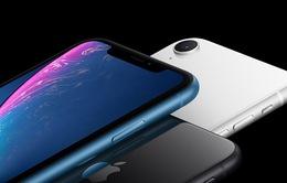 """Sở hữu nhiều ưu điểm, iPhone Xr trở thành """"cơn ác mộng"""" với các hãng smartphone Android"""
