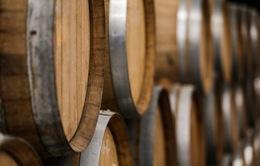 Tìm thấy nhà máy bia lâu đời nhất thế giới