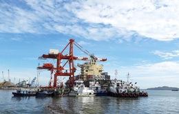 Yêu cầu thu hồi hơn 75% cổ phần tại Công ty cổ phần Cảng Quy Nhơn