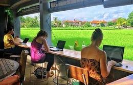 Indonesia thu hút khách du lịch ba lô