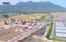 Người dân vùng biển Ninh Hòa (Khánh Hòa) cần an cư