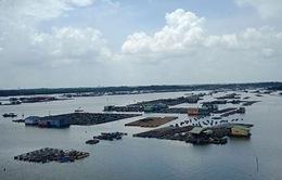 Lật ghe làm 1 người thiệt mạng tại Bà Rịa - Vũng Tàu