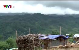 Hàng trăm hộ dân vùng núi Nam Trà Mi (quảng Nam) tình nguyện di dời khỏi vùng sạt lở