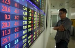 Cổ phiếu mía đường lao dốc