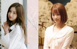 Bắt giữ thủ phạm gắn máy quay lén trong phòng Shin Se Kyung và Bomi