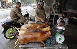 Cần có quy định siết chặt kinh doanh thịt chó