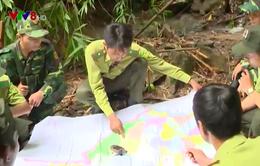 Biên phòng, Kiểm lâm phối hợp bảo vệ rừng vùng biên