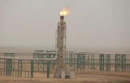 Giá dầu thế giới tăng lên mức cao nhất trong 4 năm qua