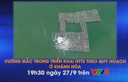 """Nhịp sống miền Trung """"Vướng mắc trong triển khai NTTS theo quy hoạch ở Khánh Hòa"""""""