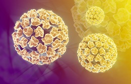 Những điều chưa biết về virus HPV
