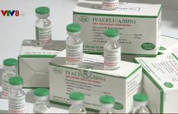 Nhiều cơ hội khi Việt Nam sản xuất thành công 2 vắc xin cúm