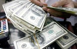 Nhiều ngân hàng vẫn giữ giá bán USD ở mức 23.390 đồng