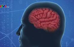 Hy vọng mới trong điều trị Alzheimer