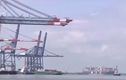 Kim ngạch xuất khẩu của Việt Nam sang Mỹ cao kỷ lục