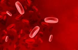 Leukemia cấp - loại bệnh ung thư máu đặc biệt nguy hiểm