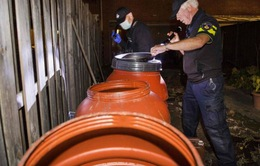 Vấn đề chống khủng bố: Cảnh sát Hà Lan phát hiện 100 kg vật liệu chế tạo bom