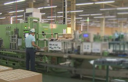 Đà Nẵng nỗ lực thu hút đầu tư từ Nhật Bản