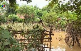 Tâm lý chủ quan khiến số người thiệt mạng do mưa lũ gia tăng