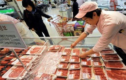 Hàn Quốc kiểm tra kỹ sản phẩm thịt bò từ Mỹ do lo ngại dịch bò điên