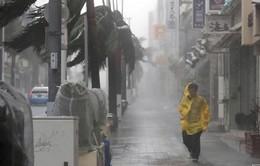 Siêu bão Trami đổ bộ phía Nam Nhật Bản, nhiều khu vực mất điện
