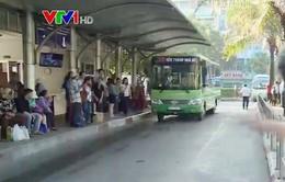 Những chuyến xe bus chở… nghĩa tình