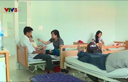 Gia tăng sốt xuất huyết tại Khánh Hòa