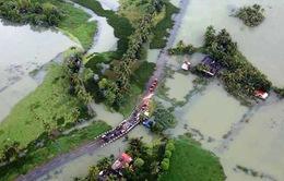 Bệnh dịch hoành hành sau lũ lụt tại Ấn Độ
