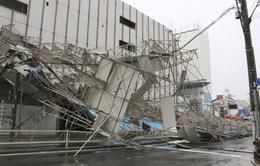 9 người thiệt mạng do bão Jebi tại Nhật Bản