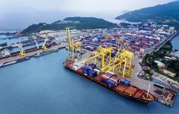 Kinh tế Việt Nam tăng trưởng trong biến động