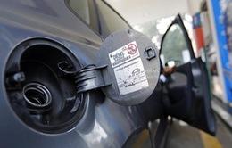 Thành phố Frankfurt, Đức cấm ô tô chạy bằng diesel