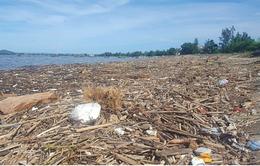 Bãi biển Nghệ An ngập rác sau mưa lớn