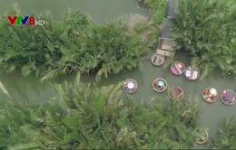 Hội An chấn chỉnh hoạt động du lịch tại rừng dừa bảy mẫu.