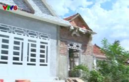 UNDP hỗ trợ xây nhà vùng thiên tai