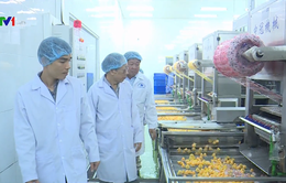 Liên kết 4 nhà tạo sản phẩm hàng hóa chất lượng cao