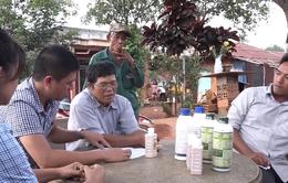 Vụ bất cập hỗ trợ người trồng điều: Người dân bị đe doạ vì cung cấp thông tin