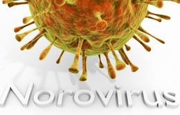 Bùng phát norovirus khiến 600 học sinh phải nghỉ học tại Mỹ