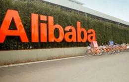 Mỹ cáo buộc Alibaba bán hàng giả, hàng vi phạm bản quyền